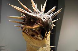 © Licensed to London News Pictures 27/02/2011 London, UK. . Hungarian Horntail in The Creature Room at The Warner Brothers Studio Tour, Leavesden, Herts where all 8 Harry Potter movies were made and opens to the public this week..Photo credit : Simon Jacobs/LNP