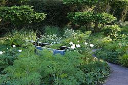 Green and white planting in the Laurent-Perrier Garden. Cloud pruned hornbeam. Winner Best in Show Chelsea 2008