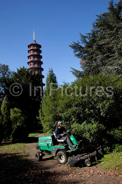 Staff mows the grass near the Pagoda at Kew Gardens in the autumn, London. In the South East corner of Kew Gardens stands the Great Pagoda (by Sir William Chambers), erected in 1762, from a design in imitation of the Chinese Ta. From the base to the highest point is 50m. The Royal Botanic Gardens, Kew, usually referred to simply as Kew Gardens, are 121 hectares of gardens  and botanical glasshouses between Richmond and Kew in southwest London, England. It is an internationally important botanical research and education institution with 700 staff, receiving around 2 million visitors per year.
