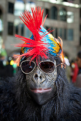 © Licensed to London News Pictures. 22/09/2012. LONDON, UK. A runner wearing a gorilla costume poses for a portrait as they wait to begin the 2012 Great Gorilla Run in London today (22/09/12). Now in its 10th year, the annual event sees hundreds of competitors take part in a 7km fun-run dressed as gorillas to raise money for mountain gorilla conservation projects in Africa. Photo credit: Matt Cetti-Roberts/LNP