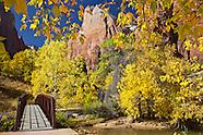 Zion-National-Park