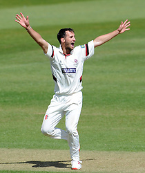 Somerset's Lewis Gregory unsuccessfully appeals for the caught behind decision of Middlesex's Adam Voges. - Photo mandatory by-line: Harry Trump/JMP - Mobile: 07966 386802 - 29/04/15 - SPORT - CRICKET - LVCC Division One - County Championship - Somerset v Middlesex - Day 4 - The County Ground, Taunton, England.