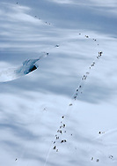 Aerial shot of an ant-like trail of walkers heading for the mountain hut on the Monchjoch from the Jungfraujoch