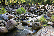 The Mossman riverbed, Daintree Rainforest, Queensland, Australia