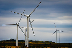 Wind turbines on the Black Law Wind Farm, South Lanarkshire, Scotland<br /> <br /> (c) Andrew Wilson | Edinburgh Elite media
