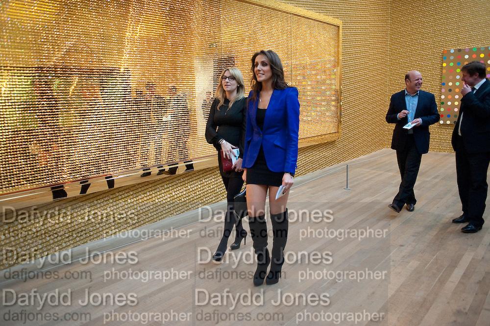 MARIA MAKAROVA; ANNA MACHKEVITCH, Damien Hirst, Tate Modern: dinner. 2 April 2012.