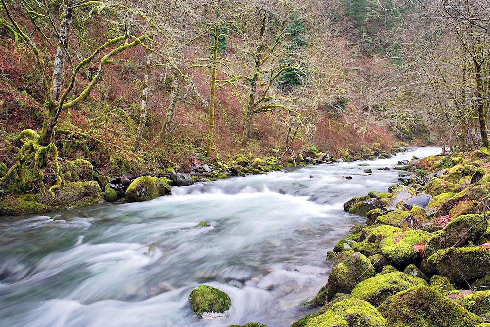 Rushing waters in Eagle Creek, Columbia River Gorge, Oregon