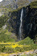 Waterfall on Rob Roy Track, Mount Aspiring National Park, Southern Alps, Otago region, South Island of New Zealand. In 1990, UNESCO honored Te Wahipounamu - South West New Zealand as a World Heritage Area.