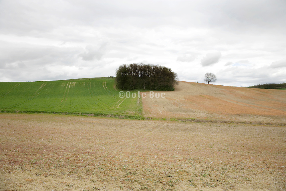 bare and green agricultural land France Languedoc