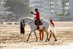 Fuchs Martin, SUI, Leone Jei<br /> CSIO La Baule 2021<br /> © Hippo Foto - Dirk Caremans<br />  11/06/2021