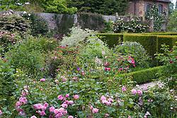 The Rose Garden at Sissinghurst Castle in mid summer