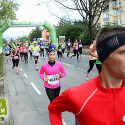 20141026: SLO, Athletics - 19th Ljubljana Marathon 2014 / Zavarovalnica Tilia - 21 in 42 km -Group 2
