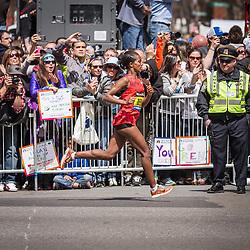 2014 Boston Marathon: cheering spectators line Boylston Street on homestretch of race as runner up Buzenesh Deba approaches finish line