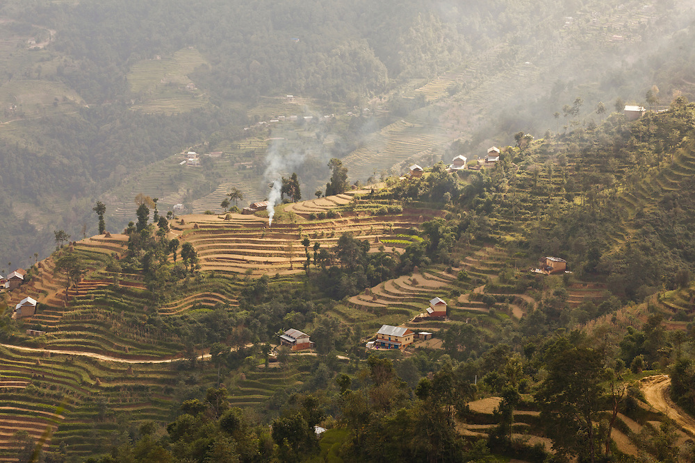 Terraced rice fields on a mountainside in Nepal. Rice is the main crop in Nepal, a country where 66% of the population are involved in agriculture which is responsible for 33% of the GDP, which in 2010 was $562 per capita.