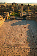 MOROCCO, ROMAN, VOLUBILIS Roman City, 1st-3c.AD; house and mosaic