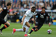Jordan Ayew of Swansea city © goes past Ashley Williams of Everton (r). Premier league match, Swansea city v Everton at the Liberty Stadium in Swansea, South Wales on Saturday 6th May 2017.<br /> pic by  Andrew Orchard,