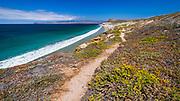 Santa Cruz Island from the Skunk Point trail, Santa Rosa Island, Channel Islands National Park, California USA