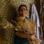 Vandana Shiva, Navdanya, Agriculture, anti GM crops