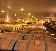 The new cellar for ageing wine in barrel, rows and rows of oak barriques Chateau de Haux Premieres Cotes de Bordeaux Entre-deux-Mers Bordeaux Gironde Aquitaine France