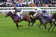 BLYTON (4) ridden by Richard Kingscote and trained by Tom Dascombe wins The TSG Keeping IT Real Handicap Stakes over 5f (£15,000) during the Countryside Raceday, October Finale at York Racecourse, York, United Kingdom on 12 October 2018. Pic Mick Atkins