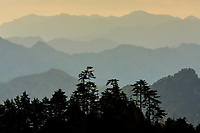 Mountain view, Tangjiahe National Nature Reserve, Sichuan Province; China