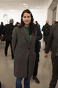 GILLIAN WEARING, STICKS WITH DICKS AND SLITS, Tim Noble and Sue Webster. Blain Southern. hanover Sq. london. 2 February 2017