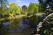 Ogród botaniczny w Ostrowie Tumskim, Wrocław, Polska<br /> Botanical garden in Ostrów Tumski in Wrocław, Poland