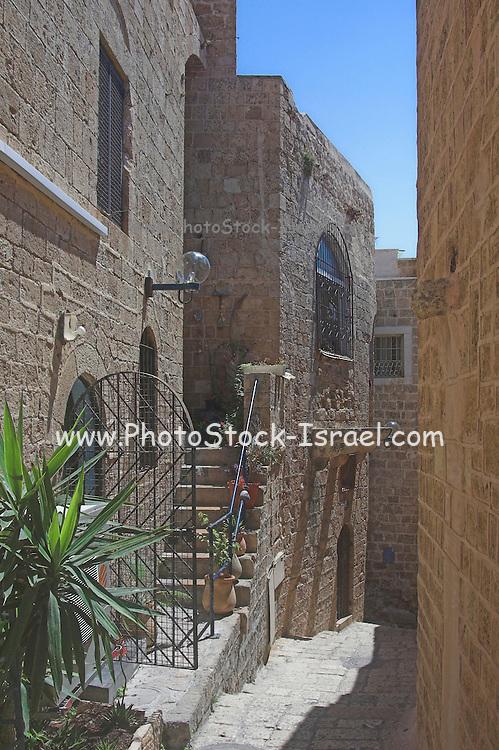 Israel, Tel Aviv Jaffa, the narrow cobbled streets of Old Jaffa,