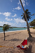 Hammock on coconut palms Sunbay beach in Vieques Island, Puerto Rico.