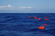 Life jackets float on the water during a training exercise by the German NGO Sea-Eye migrant rescue ship 'Alan Kurdi' while on its way to the search and rescue zone off the North African coast, in the western Mediterranean Sea, August 29, 2019.  REUTERS/Darrin Zammit Lupi     TPX IMAGES OF THE DAY - RC1E5D933020