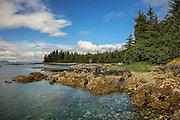 Typical rocky beach in the Prince William Sound, Alaska