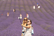 People take pictures in a lavender field at Hitchin Lavender farm in Ickleford, Britain on Monday, Aug 10, 2020. <br /> Hitchin Farm attracts tourists and it is close to both London and Cambridge. Hitchin has around 35 miles of lavender rows which people can walkthrough. Hitchin Farm also grows sunflowers which can be seen in full bloom this time of year. (VX Photo/ Vudi Xhymshiti)