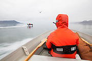 Scientists return from the field, crossing Hornsund by motorboat on the way to the Polish Polar Station in Svalbard.
