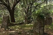 Cannon's Point Plantation Ruins & maritime forest<br /> St Simon's Island, Barrier Islands, Georgia<br /> USA
