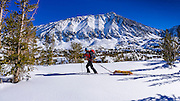 Backcountry skier under Mount Morgan, John Muir Wilderness, Sierra Nevada Mountains, California  USA