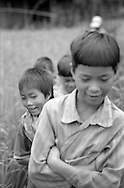 young children are curious as the tourists come into their Hon Village, between Sapa and Binh Lu, Vietnam.(Ethnic minority Lu)