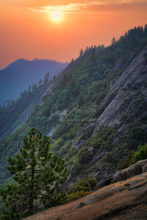 Sequoia and King Canyon National Park