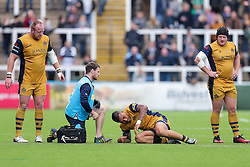 Tusi Pisi of Bristol Rugby is treated before going off injured - Rogan Thomson/JMP - 08/10/2016 - RUGBY UNION - Kingston Park - Newcastle, England - Newcastle Falcons v Bristol Rugby - Aviva Premiership.