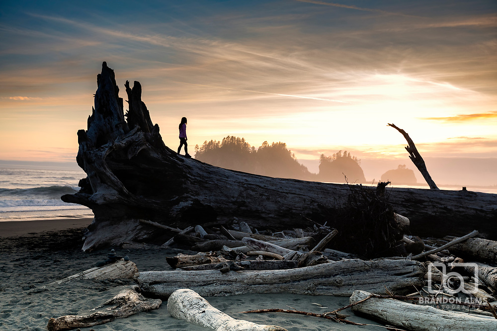 A woman stands on a huge washed up tree along First Beach in La Push, Washington in Olympic National Park. Photo by Brandon Alms Photography