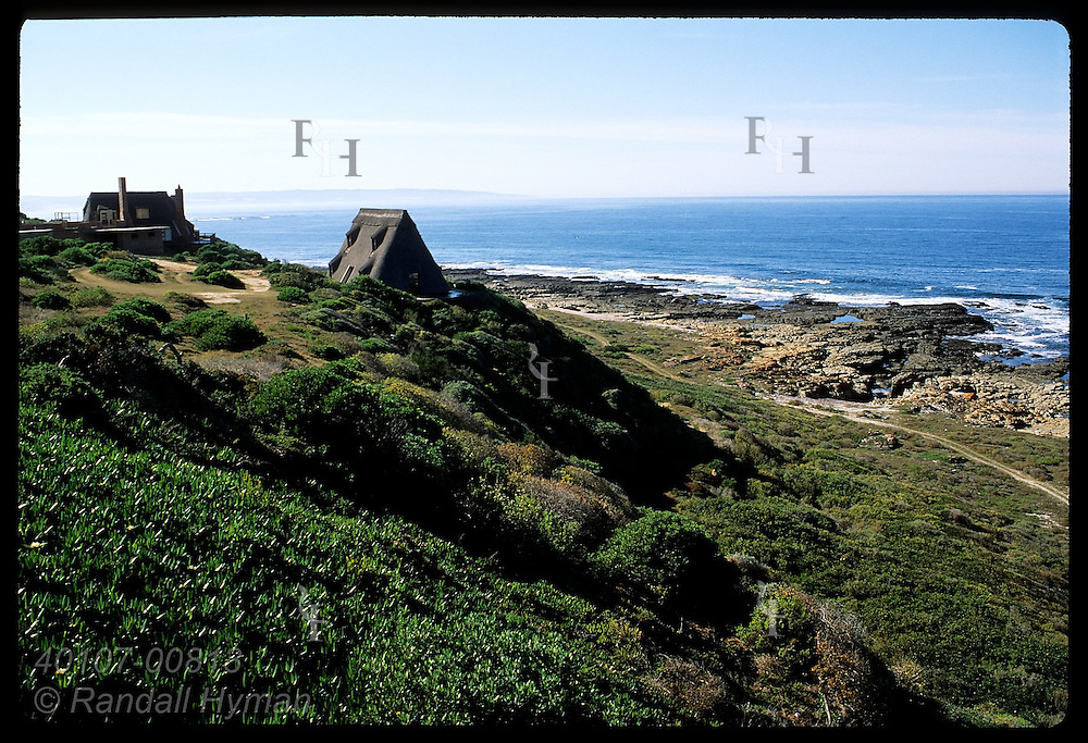 Unusual homes w/ huge Cape Dutch thatch roofs sit above Indian Ocean at Bushbok Dune; Still Bay South Africa