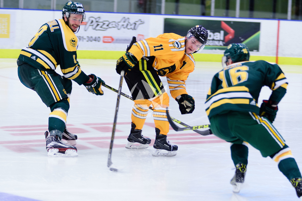 1st year forward Logan Harland (11) of the Regina Cougars in action during the Men's Hockey Home Game on November 5 at Co-operators arena. Credit: Arthur Ward/Arthur Images