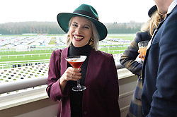 NEWBURY, ENGLAND 26TH NOVEMBER 2016: Pips Taylor at Hennessy Gold Cup meeting Newbury racecourse Newbury England. 26th November 2016. Photo by Dominic O'Neill