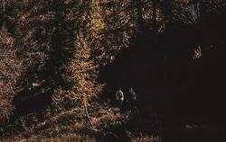THEMENBILD - ein Paar bei seiner Wanderung zum Wildsee mit dem Wildseeloderhaus, aufgenommen am 20. Oktober 2018 in Fieberbrunn, Österreich // a couple on a hike to the Wildsee with the Wildseeloderhaus, Fieberbrunn, Austria on 2018/10/20. EXPA Pictures © 2018, PhotoCredit: EXPA/ JFK