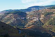 vineyards quinta do noval douro portugal
