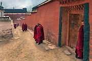 Labrang Monastery during Tibetan New Year celebrations, Gansu Province, China