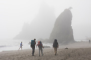 Backpackers hike through fog along Rialto Beach, Olympic National Park, Washington.