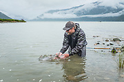 Low rain clouds shroud BC's Coast Mountains as David Page releases a summer chinook back to tidewater on the Dean River.