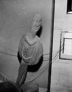 """9305-B3499-7. """"Winquatt Museum, The Dalles. April 2, 1974."""