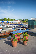 Henley on Thames, England, United Kingdom, 28th June 2019, Henley Royal Regatta Qualifiers, time trial, on Henley Reach, [© Peter SPURRIER/Intersport Image]<br /> <br /> 16:35:57
