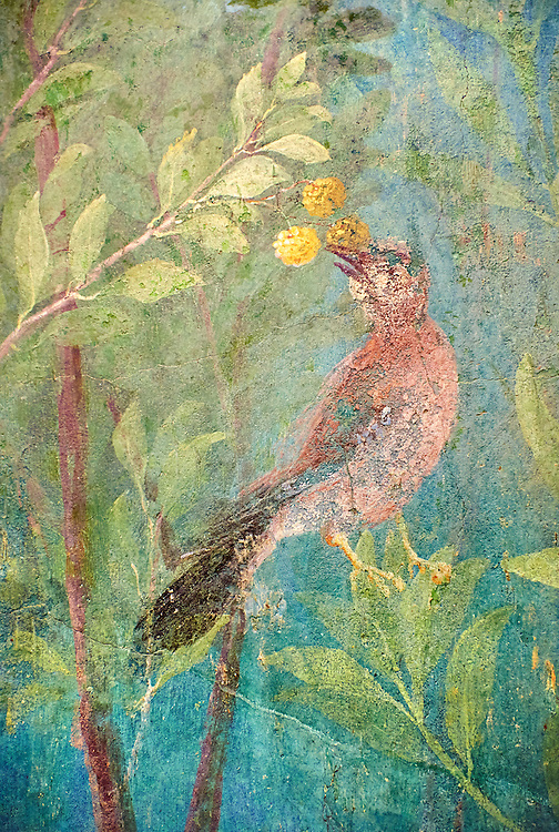 Painted Bird from the Roman fresco of a garden from Villa Livia, Rome (Early first century AD), Rome, Livia was the wife of Roman emperor Augustus.  Museo Nazionale Romano ( National Roman Museum), Rome, Italy.<br /> Trees and shrubs had symbolic importance to the Romans as can be see by the plants used in the trompe-l'œil frescoes from the Villa Livia, Rome, which contains plants linked to the deities particularily venerated by Augustus and Livia. .<br /> <br /> If you prefer to buy from our ALAMY PHOTO LIBRARY  Collection visit : https://www.alamy.com/portfolio/paul-williams-funkystock/national-roman-museum-rome-fresco.html<br /> <br /> Visit our ROMAN ART & HISTORIC SITES PHOTO COLLECTIONS for more photos to download or buy as wall art prints https://funkystock.photoshelter.com/gallery-collection/The-Romans-Art-Artefacts-Antiquities-Historic-Sites-Pictures-Images/C0000r2uLJJo9_s0